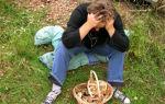 Категории грибников